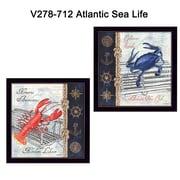 "TrendyDecor4U Atlantic Sea Life -2""x12""x12"" Framed Print (V278-712)"