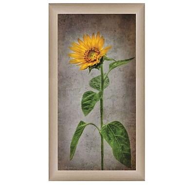 TrendyDecor4U Sunflower II -9