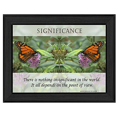 TrendyDecor4U Significance Framed Print -12.25