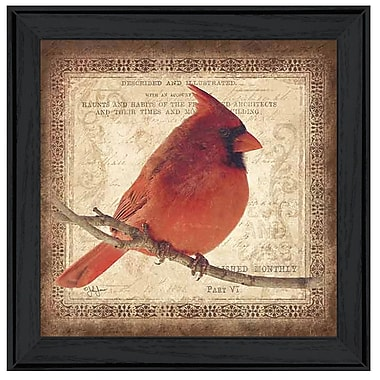 TrendyDecor4U Male Cardinal-12