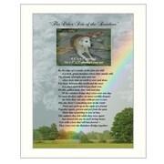 "TrendyDecor4U Rainbow Bridge-12""x16"" Framed Print (ME02C-712W)"