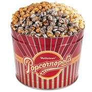 Popcornopolis Gourmet 2 Gallon Winter Tin, Caramel, Kettle, and Zebra, (DS1369)