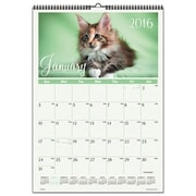 At-A-Glance Kittens Wall Calendar (AZTY01387)