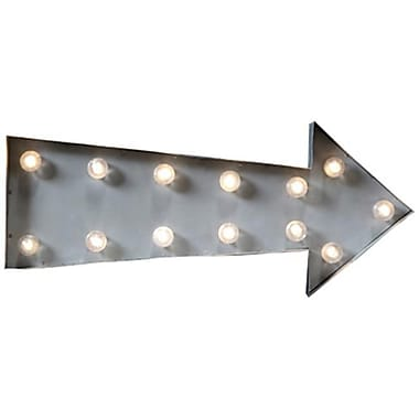 Creative Co Op DA3665 20 x 8 in. Metal lED Marquee Arrow lamp, Silver (TRVAl10981)