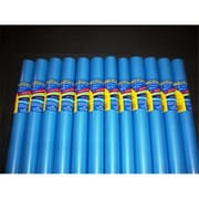 RiteCo Raydiant Riteco Raydiant Fade Resistant Art Rolls Bright Blue 18 In. x 50 Ft. 12 Pack (RTCO072)