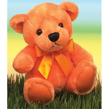 First and Main Orange Rainbow Bear (FSTMN075)