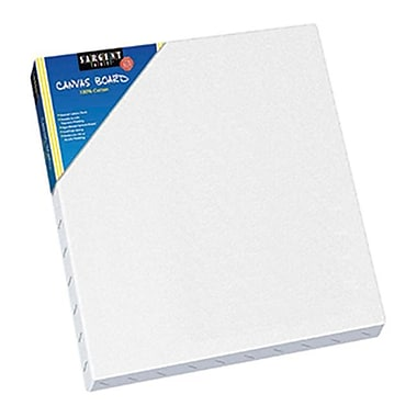 SARGENT ART INC. CANVAS 12 x 12 (lEARN0146)