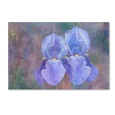 Trademark Fine Art Cora Niele 'Iris Blue Rhythm' 16
