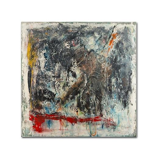 "Trademark Fine Art Joarez 'Furia e Paixao' 14"" x 14"" Canvas Stretched (190836234349)"