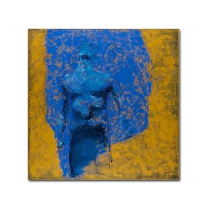 Trademark Fine Art Joarez 'Explosao' 14