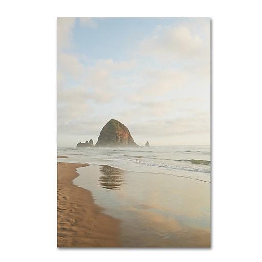 "Trademark Fine Art Ariane Moshayedi 'Haystack Rock Oregon' 12"" x 19"" Canvas Stretched (190836268764)"