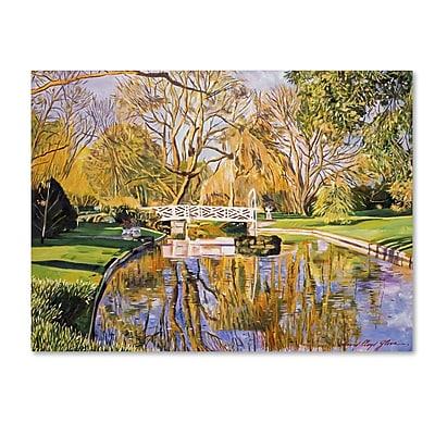 Trademark Fine Art David Lloyd Glover 'Reflections of the White Bridge' 14