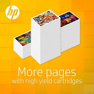 HP 920XL/920 Black High Yield, Cyan/Magenta/Yellow Standard Yield Ink Cartridges, 4/Pack (N9H61FN)