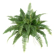 "Nearly Natural Boston Fern 40"" Green (6032-S2)"