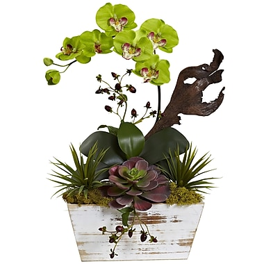 Nearly Natural Orchid & Succulent Garden with White Wash Planter 21