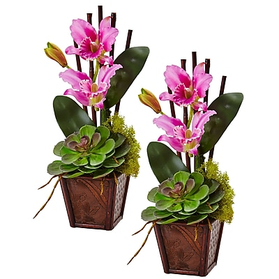 Nearly Natural Cattleya Orchid and Succulent Arrangement 14.75