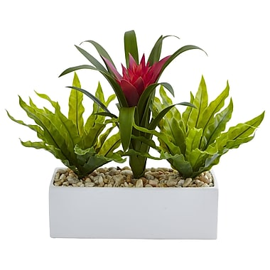 Nearly Natural Bromeliad and Birdsnest in Rectangular Planter 14