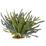 "Nearly Natural Staghorn Fern 21"" Green (6107-S2)"