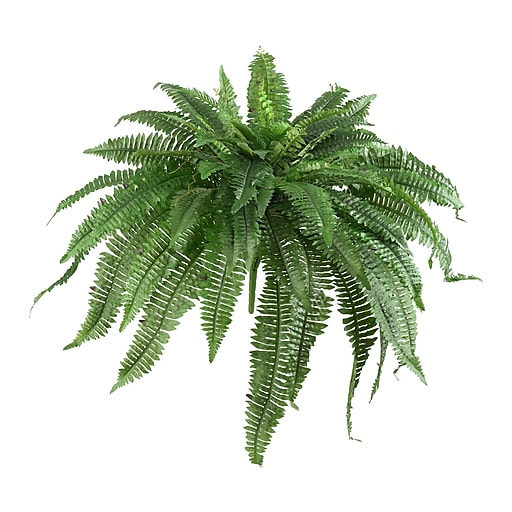 "Nearly Natural Boston Fern 48"" Green (6051-S2)"