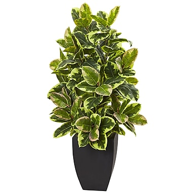 Nearly Natural Rubber Plant with Black Wash Planter 50