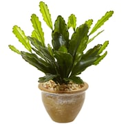 "Nearly Natural Double Cactus in Glazed Clay Pot  13"" Green (6926)"
