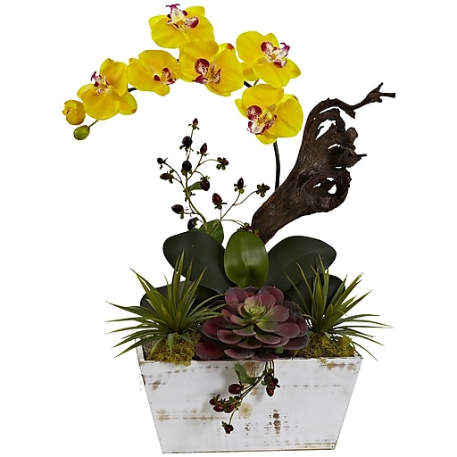 """Nearly Natural Orchid & Succulent Garden with White Wash Planter 21"""" Yellow (1458-YL)"""