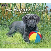 LANG Puppy 2018 Wall Calendar (18991001937)