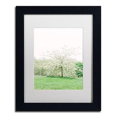 Trademark Fine Art Ariane Moshayedi 'White Cherry Blossom Tree' 11