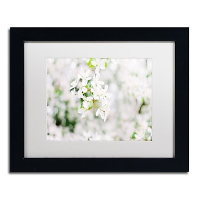 Trademark Fine Art Ariane Moshayedi 'White Cherry Blossoms 3' 11