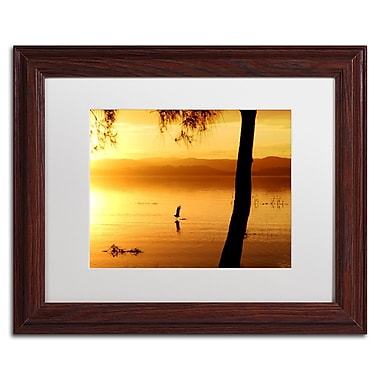 Trademark Fine Art Beata Czyzowska Young 'Sunset Journey' 11
