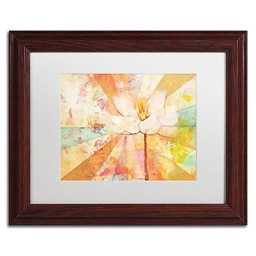 """Trademark Fine Art Adam Kadmos 'Flowerbeams' 11"""" x 14"""" Matted Framed (190836065530)"""