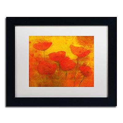 Trademark Fine Art Adam Kadmos 'Poppies' 11