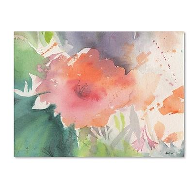 Trademark Fine Art Sheila Golden 'Coral Blossom' 14