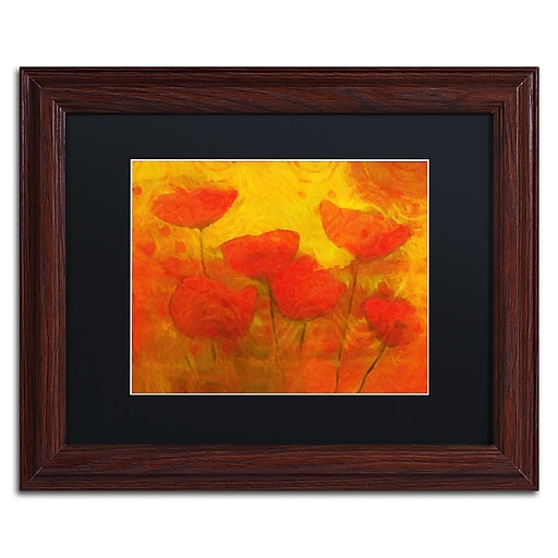 "Trademark Fine Art Adam Kadmos 'Poppies' 11"" x 14"" Matted Framed (190836066407)"