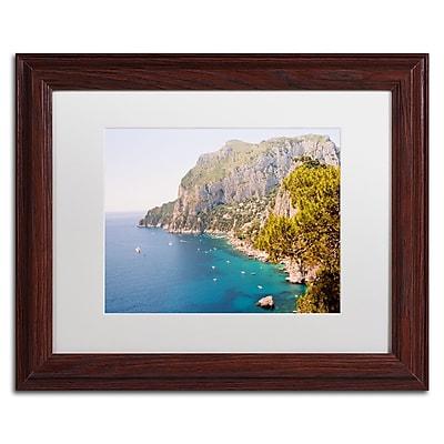 Trademark Fine Art Ariane Moshayedi 'Capri Vista' 11
