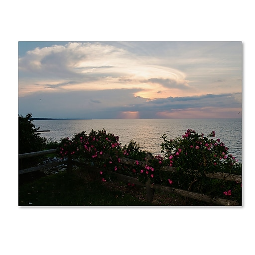 "Trademark Fine Art Kurt Shaffer 'Roses in Bloom Along the Lake' 14"" x 19"" Canvas Stretched (190836004553)"