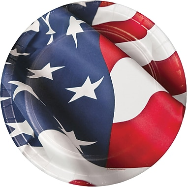 Creative Converting American Flag Paper Plates 8 pk (319640)