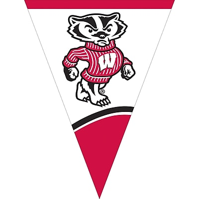 NCAA University of Wisconsin Flag Banner (294858)