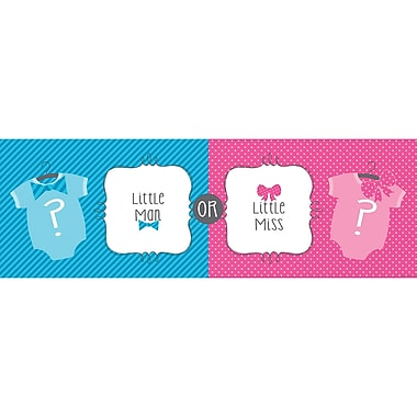 Creative Converting Bow or Bowtie Gender Reveal Baby Shower Banner (297041)