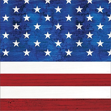 Creative Converting Patriotism Beverage Napkins 16 pk (319617)