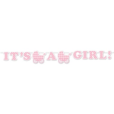 Creative Converting It's a Girl Gingham Banner (293022)