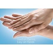Clorox Hand Sanitizer Push Button Dispenser, 1 Liter (01752)
