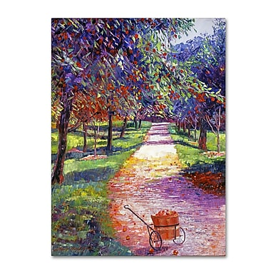 Trademark Fine Art David Lloyd Glover 'French Apple Orchards' 14