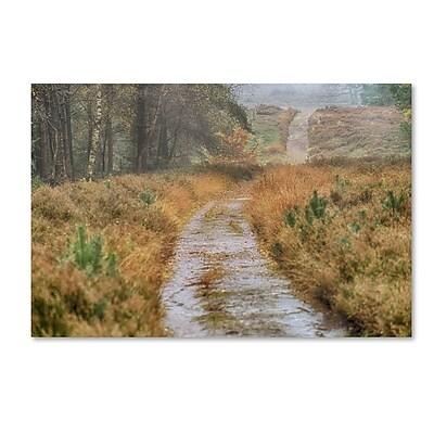 Trademark Fine Art Cora Niele 'Path' 12