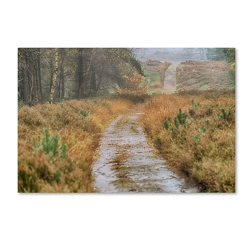 "Trademark Fine Art Cora Niele 'Path' 12"" x 19"" Canvas Stretched (190836316663)"