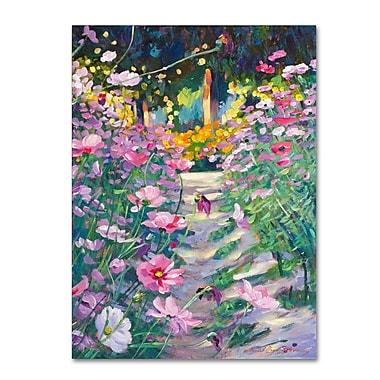 Trademark Fine Art David Lloyd Glover 'Garden Path of Cosmos' 14
