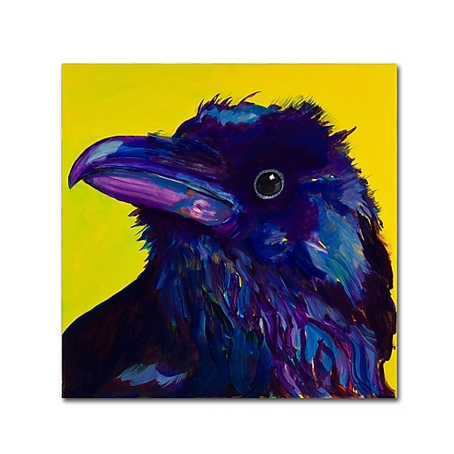 "Trademark Fine Art Pat Saunders-White 'Corvus' 14"" x 14"" Canvas Stretched (190836058433)"