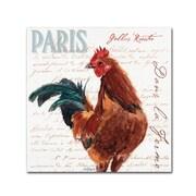 """Trademark Fine Art Jennifer Redstreake 'Dans la Ferme Rooster II' 14"""" x 14"""" Canvas Stretched (886511943339)"""