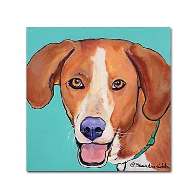 Trademark Fine Art Pat Saunders-White 'Sophie' 14