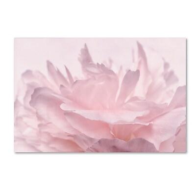 Trademark Fine Art Cora Niele 'Pink Peony Petals III' 12
